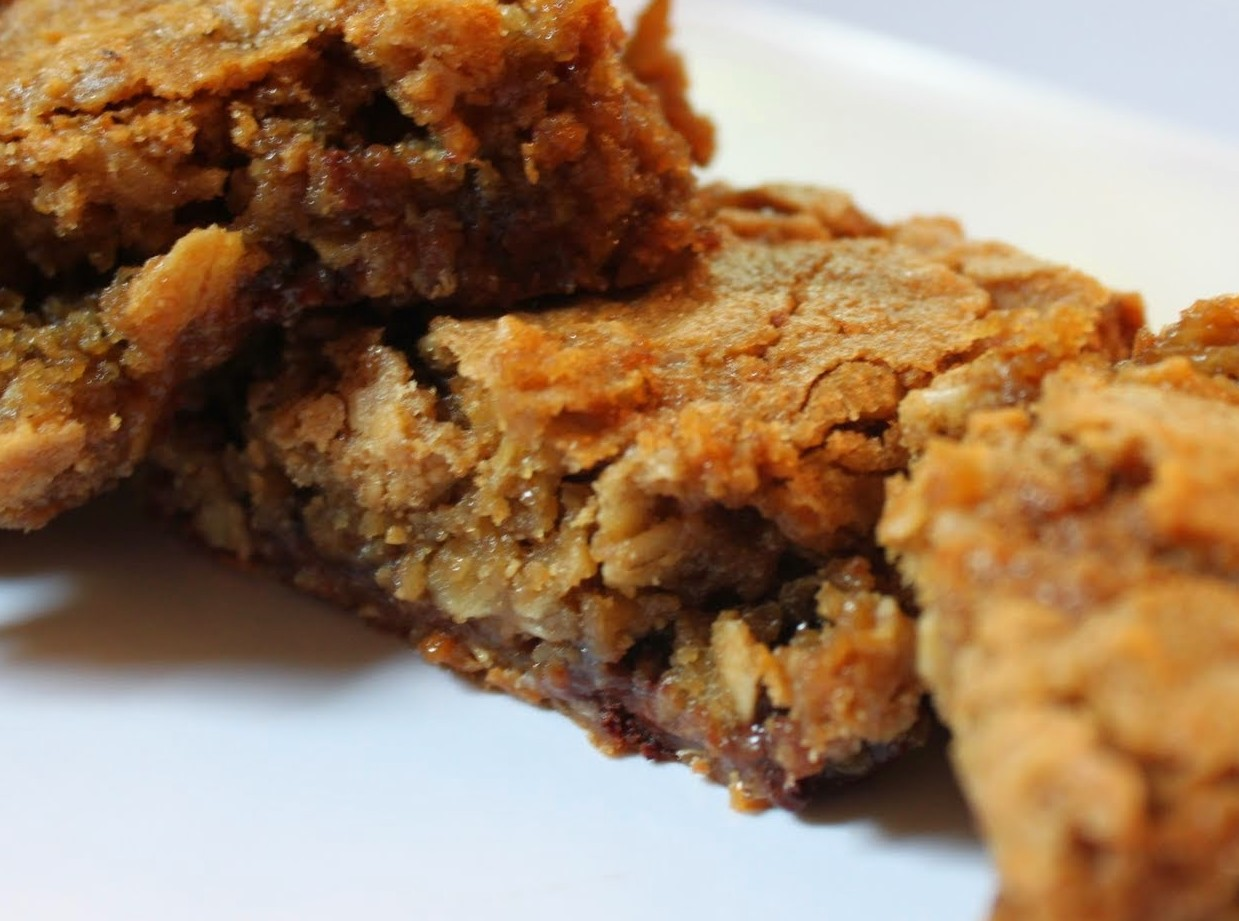 Salted Oatmeal Bars