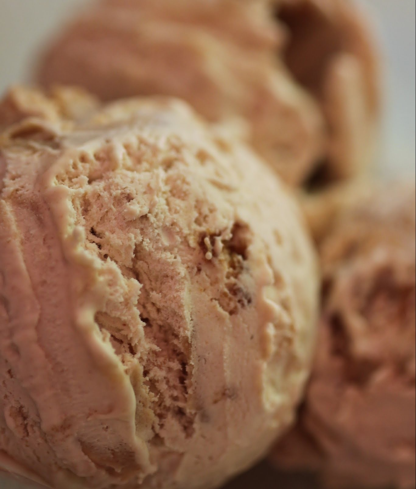Sea Salt Peanut Butter Cookie Chips Ice Cream