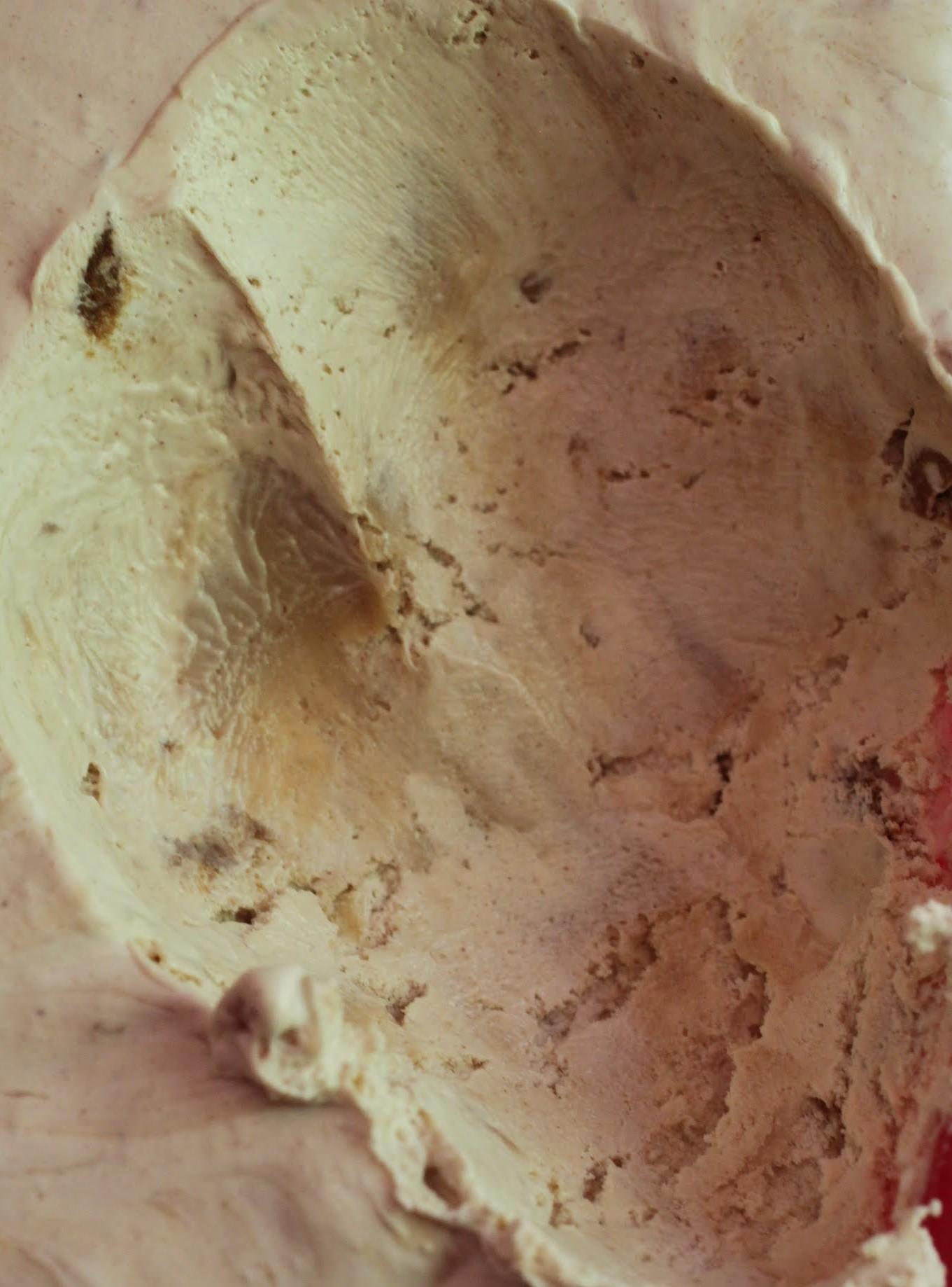 Sea Salt Peanut Butter Cookie Chip Ice Cream