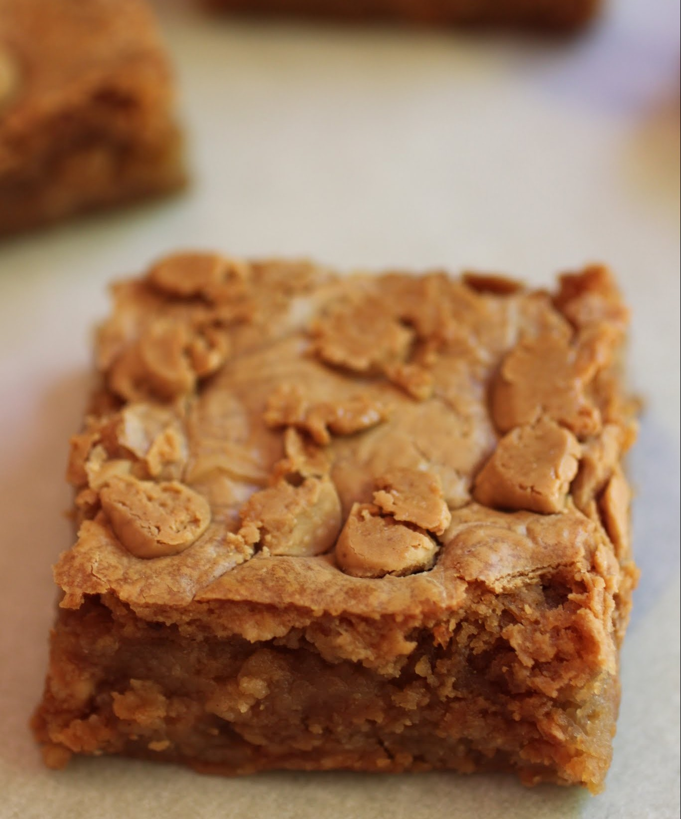 Marshmallow Peanut Butter Chip Blondies