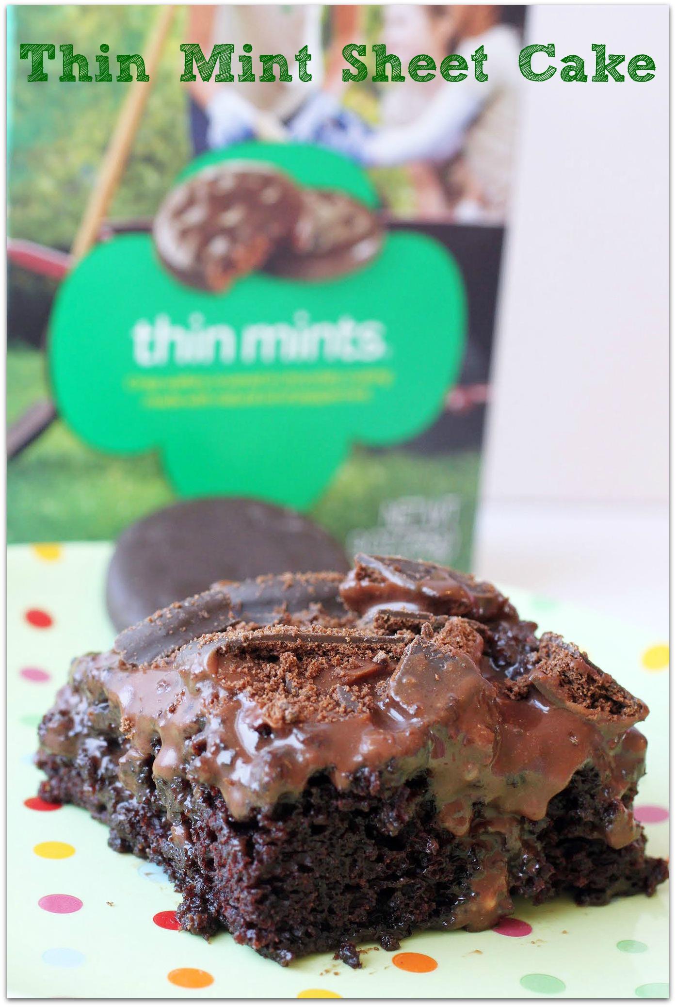 Thin Mint Sheet Cake